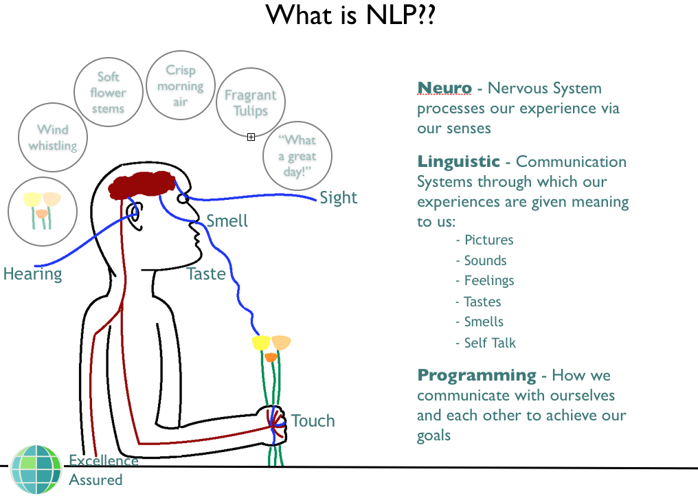 an analysis of the characteristics of neurolinguistic programming Author mccormick, donald w title bibliography of literature on neuro neurolinguistic programming bibliography of literature on neuro-linguistic programming.