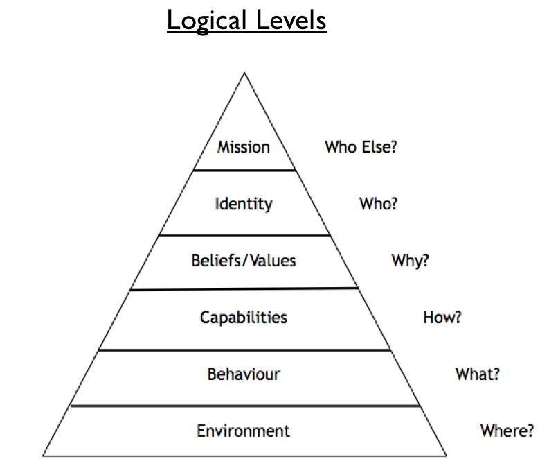Image result for logical levels