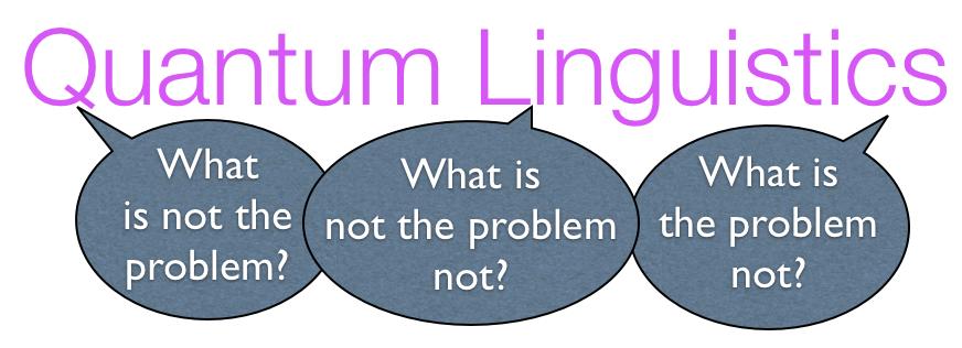 Quantum Linguistics