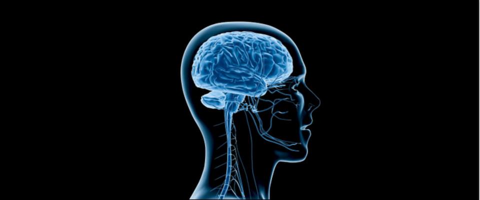 Human-head-transparent